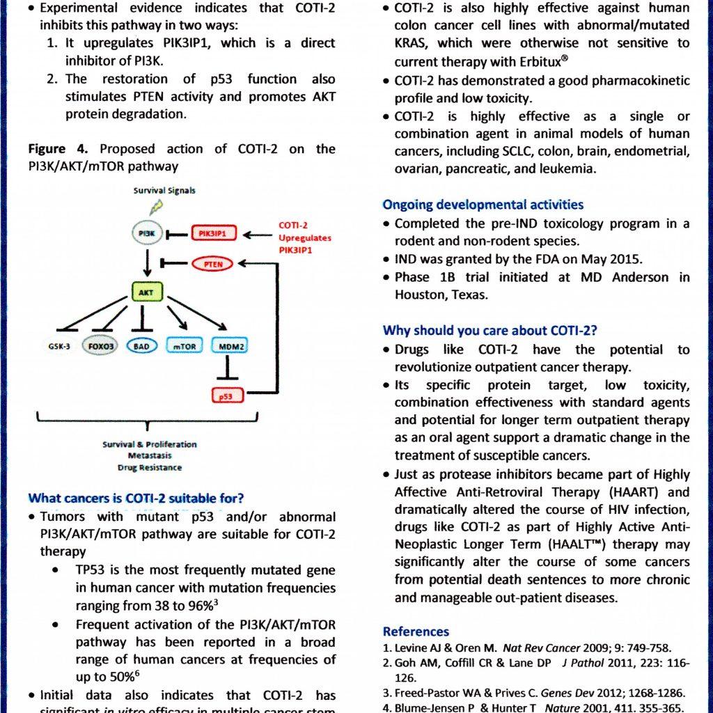 COTI-2 pg2